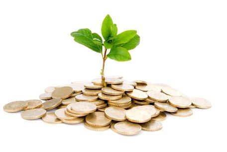 Как организовать личные финансы